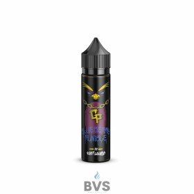 BLUEBERRY RUMBLE 50ML SHORTFILL BY GHETTO PENGUIN